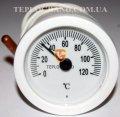 Термометр круглый 50 мм с выносным датчиком 1м, Термометры, термоманометры