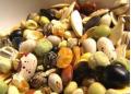 Продажа семян овощей от производителя