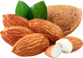 Amandes IRBIS LTD