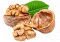 Walnut IRBIS