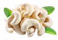 Cashews IRBIS LTD