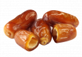 Dates IRBIS LTD