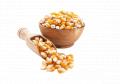 El maíz LTD FIRMA IRBIS