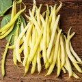 Семена спаржевой  фасоли Желтая