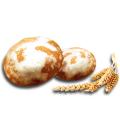 Les pains d'épice