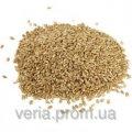 Пшеница органическая для проращивания 1 кг.