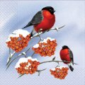 Napkin 33х33 Bullfinches packing of 20 pieces.