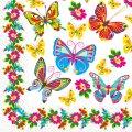 Салфетка 33х33 Цветные бабочки Марго 20шт