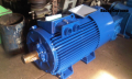 ACORUS electric motor 180S2 22 of kW of 3000 rpm three-phase