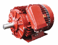 Electric motor 6AMU355M8, 160 of kW, 750 RPM.