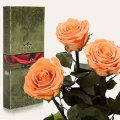 Три долгосвежие розы Florich в подарочной упаковке. Золотистый хризоберилл 7 карат, короткий стебель