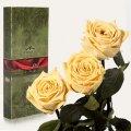 Три долгосвежие розы Florich в подарочной упаковке. Желтый Топаз 5 карат, короткий стебель