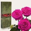 Три долгосвежие розы Florich в подарочной упаковке. Малиновый Родолит 5 карат, короткий стебель