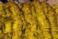 Мишура желтый + цветной кончик, длина 1.5м, диаметр 100мм.