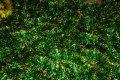 Мишура зеленая золотой кончик, длина 1.5м, диаметр 25мм.