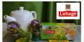 Зелёный чай с мятой и лаймом 25 шт