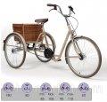 Трехколесный велосипед для детей и молодежи с ДЦП Vermeiren 2119 Retro