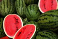 Seeds water-melon - the producer