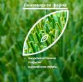 Искусственное травяное покрытие JUTAgrass