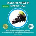 Авангард Р  виноград