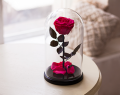 Rose in a glass flask