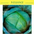 Семена капусты Бирюза белокачанной поздней Semenaoptom 250г