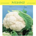 Семена капусты цветной Бодилис F1 Vilmorin 1000семян
