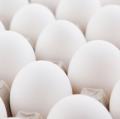 White fresh eggs c1