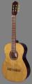 Гитара Eagle E-5