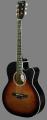 Гітара LeoTone L-01