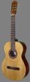 Гітара LeoTone L-10