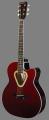 Гітара LeoTone L-18