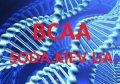 Аминокислота BCAA 2:1:1