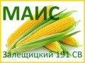 Семена кукурузы Залещицкий 191 СВ (МАИС)