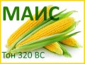 Семена кукурузы Тон 320 ВС (МАИС)