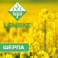 Семена озимого рапса Шерпа Лембке