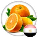 Апельсины производства Египет,Греция,ЮАР,Кипр,Турция