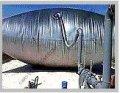 Газгольдер мягкий (подушка) для систем рекупации 50 м.куб.