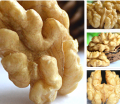 Natural Walnuts Light Halves from Ukraine