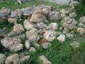 Камень дырчатый степной,бело-жолтый