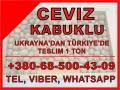 Türkiye'ye teslim kabuğunda Ceviz 28+, 30+