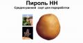 Пироль- чипсовый и семенной картофель