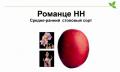 Картофель семенной средне-ранний- Романце