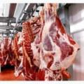 Мяса говядины  Halal