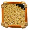 Семена гірчиця озима