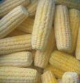 Кукуруза замороженная в початках, зернах