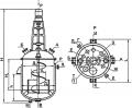 Аппарат c перемешивающим устройством с эллиптическим днищем и съемной эллиптической крышкой со шнековой мешалкой