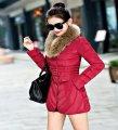 Модная зимняя женская куртка с двубортным меховой воротник.