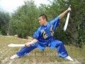 Костюм для боевых искусств вышивка драконов Шаолинь одежда кунг-фу Крыло Чун