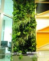 Vertical gardening with watering system